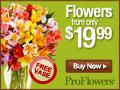 Pro Flowers FREE Vase