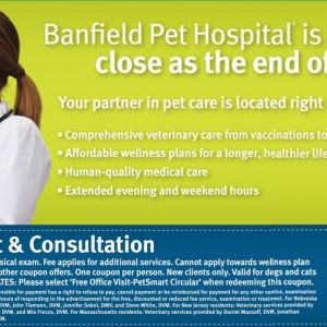 graphic about Banfield Coupons Printable referred to as Banfield Doggy Healthcare facility Free of charge Place of work Stop by and Session