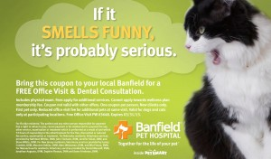Banfield Pet Hospital Petsmart 2013 FREE visit coupon