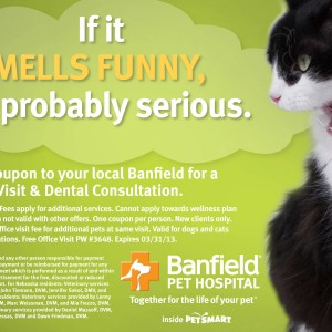 picture regarding Banfield Coupons Printable named Banfield pet dog healthcare facility place of work take a look at coupon : Coupon awful gal