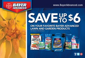 Bayer Brand Rebate Front
